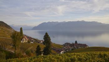 Christoph Kern - Swiss Wine
