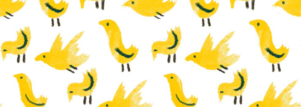 piou piou jaunes domaine la colombe balade didactique vignes